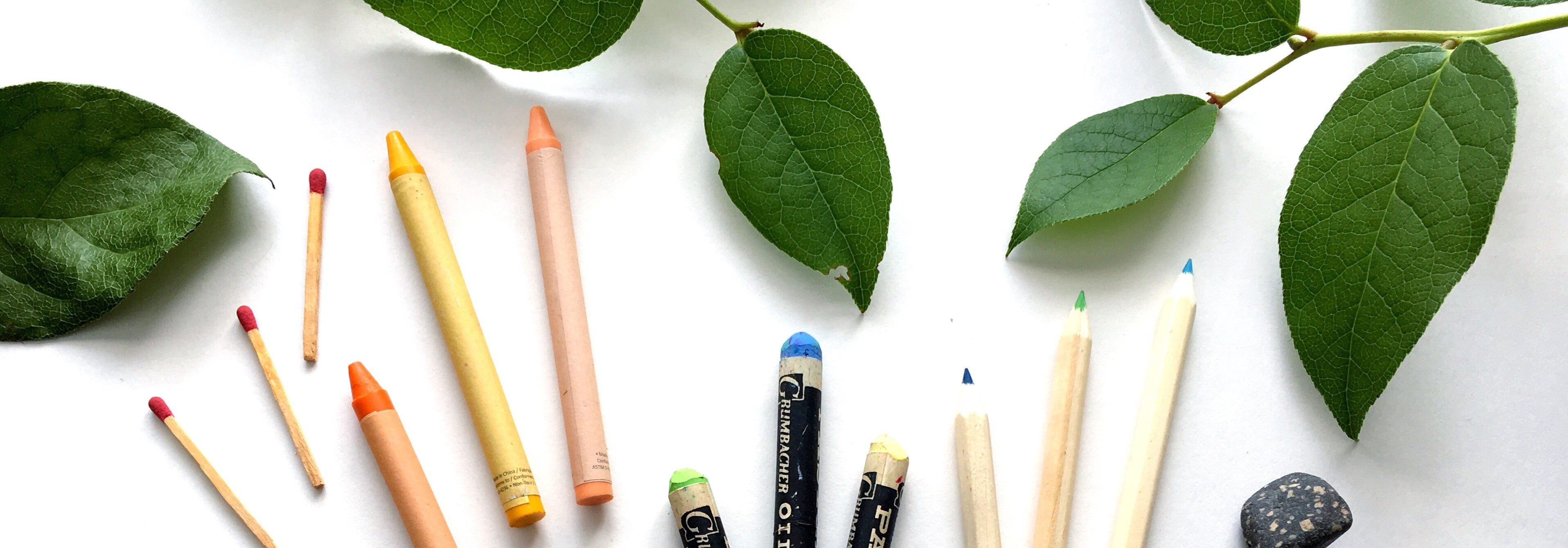 matches, crayons, oil pastels and pencil crayons with green leaves on white background