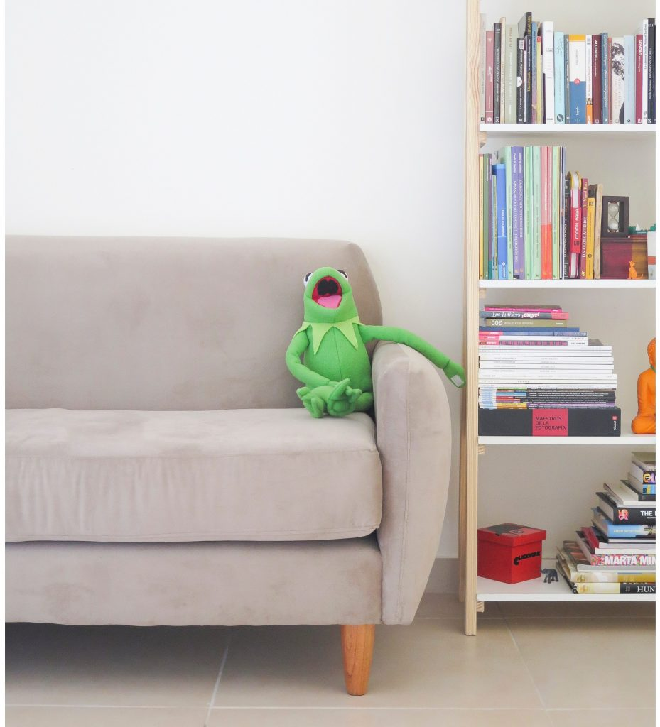 grey couch with stuffed toy beside bookshelf