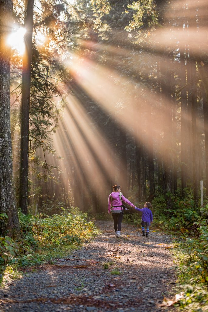 woman and child holding hands walking along path in forest