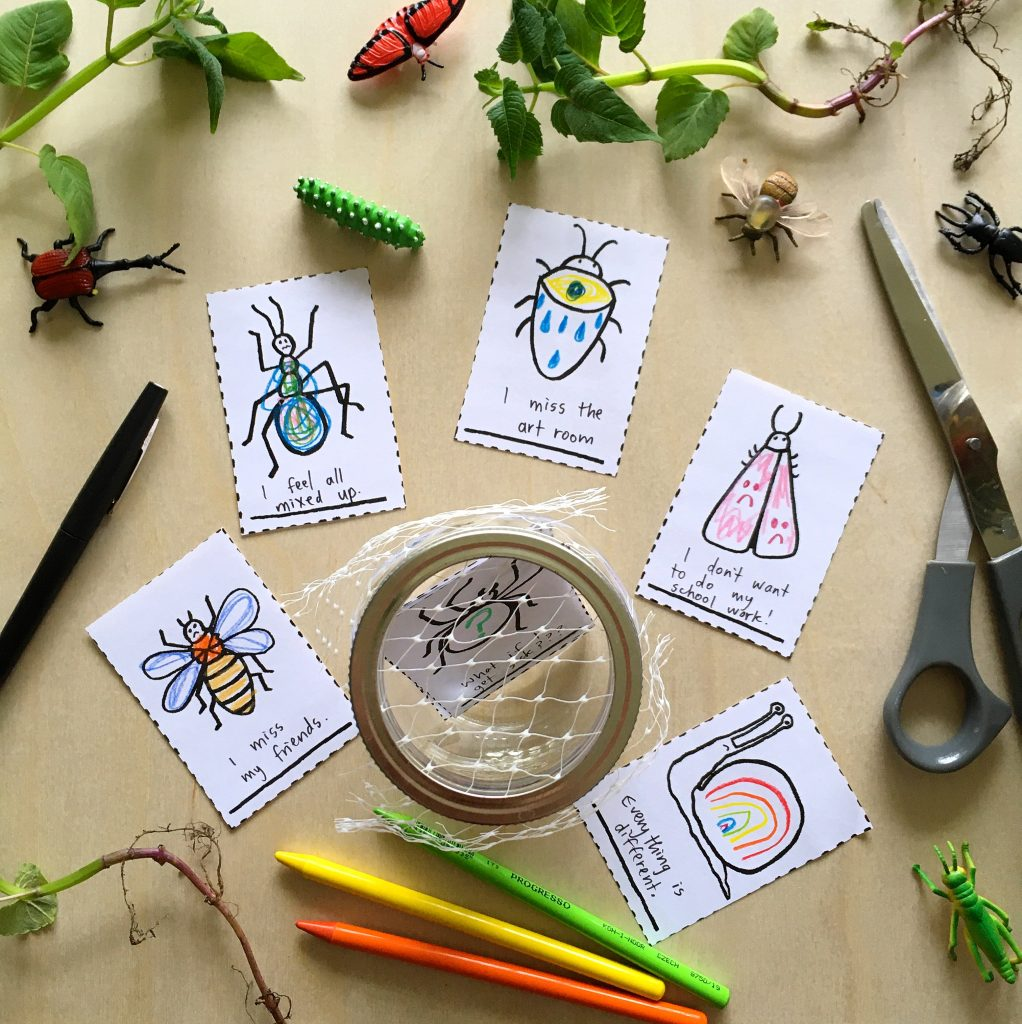 bugs drawn on pieces of paper, pencil crayons, toy bugs