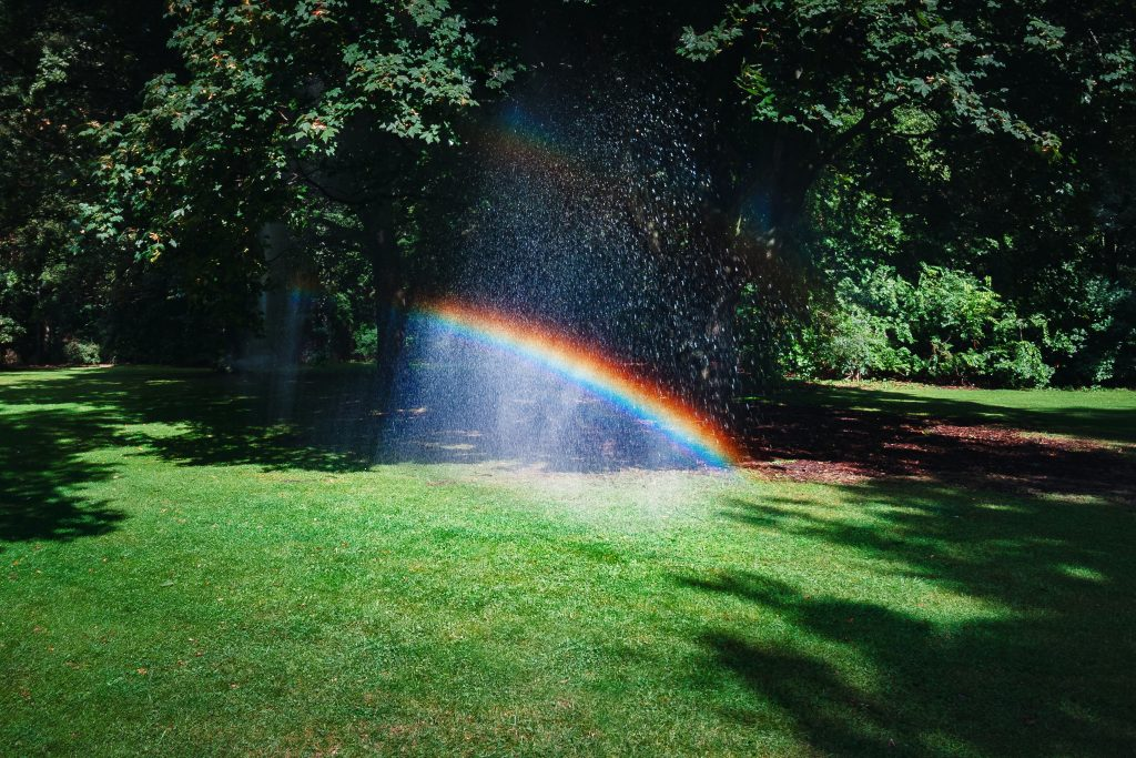 rainbow over green lawn