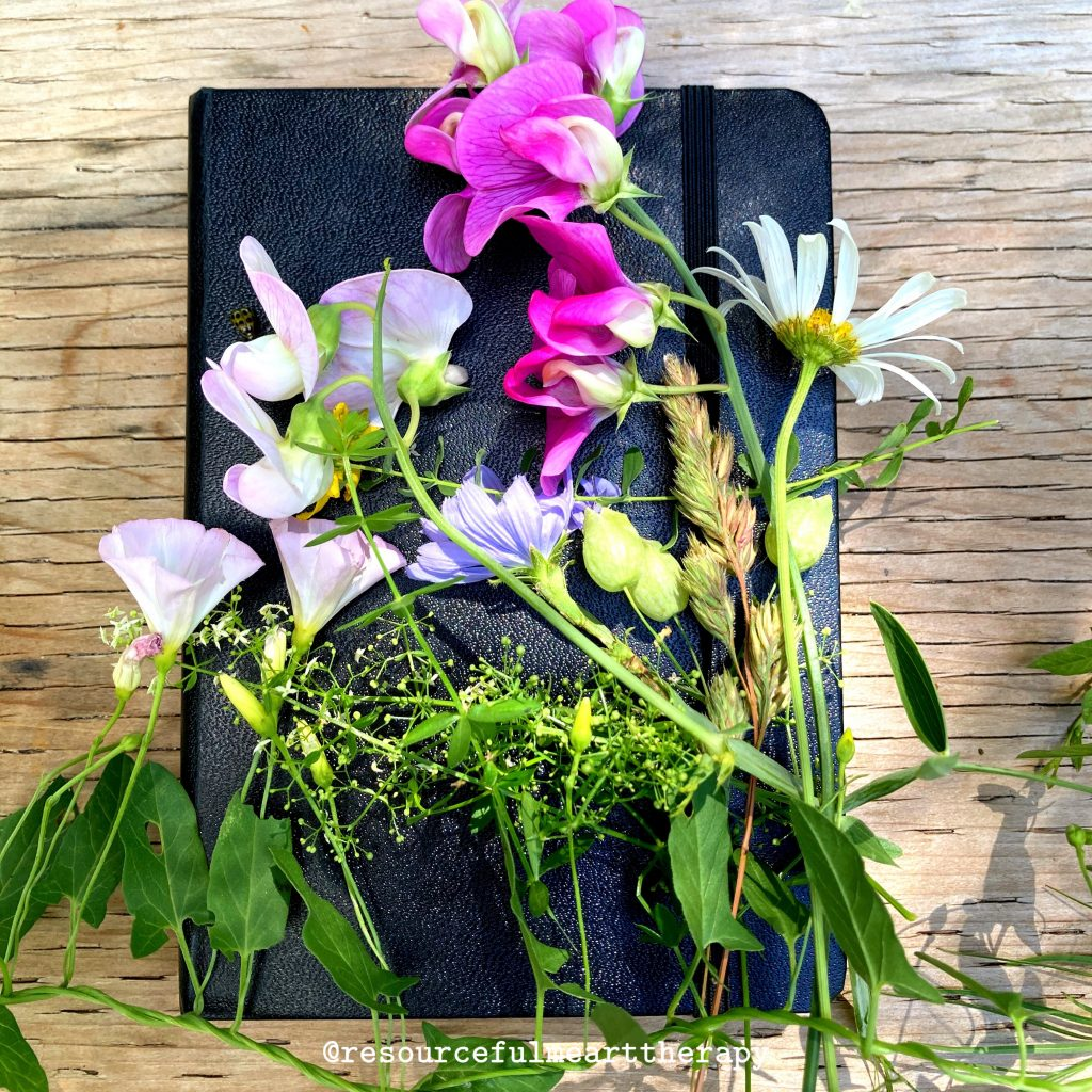 Foraged wildflowers on top of a closed black sketchbook.