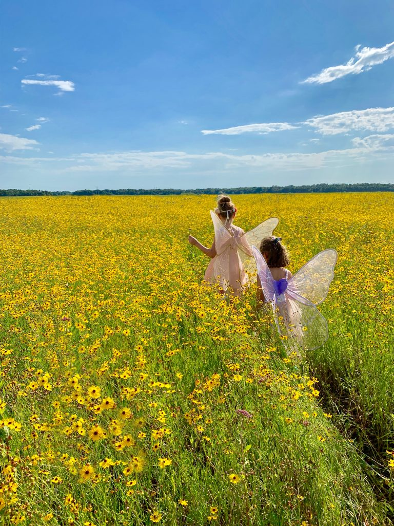 two children walking through a field of flowers wearing dresses and fairy wings