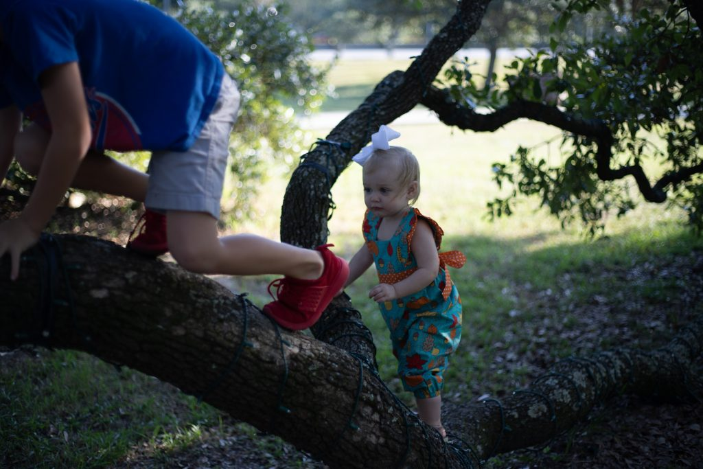 two children climbing up a tree
