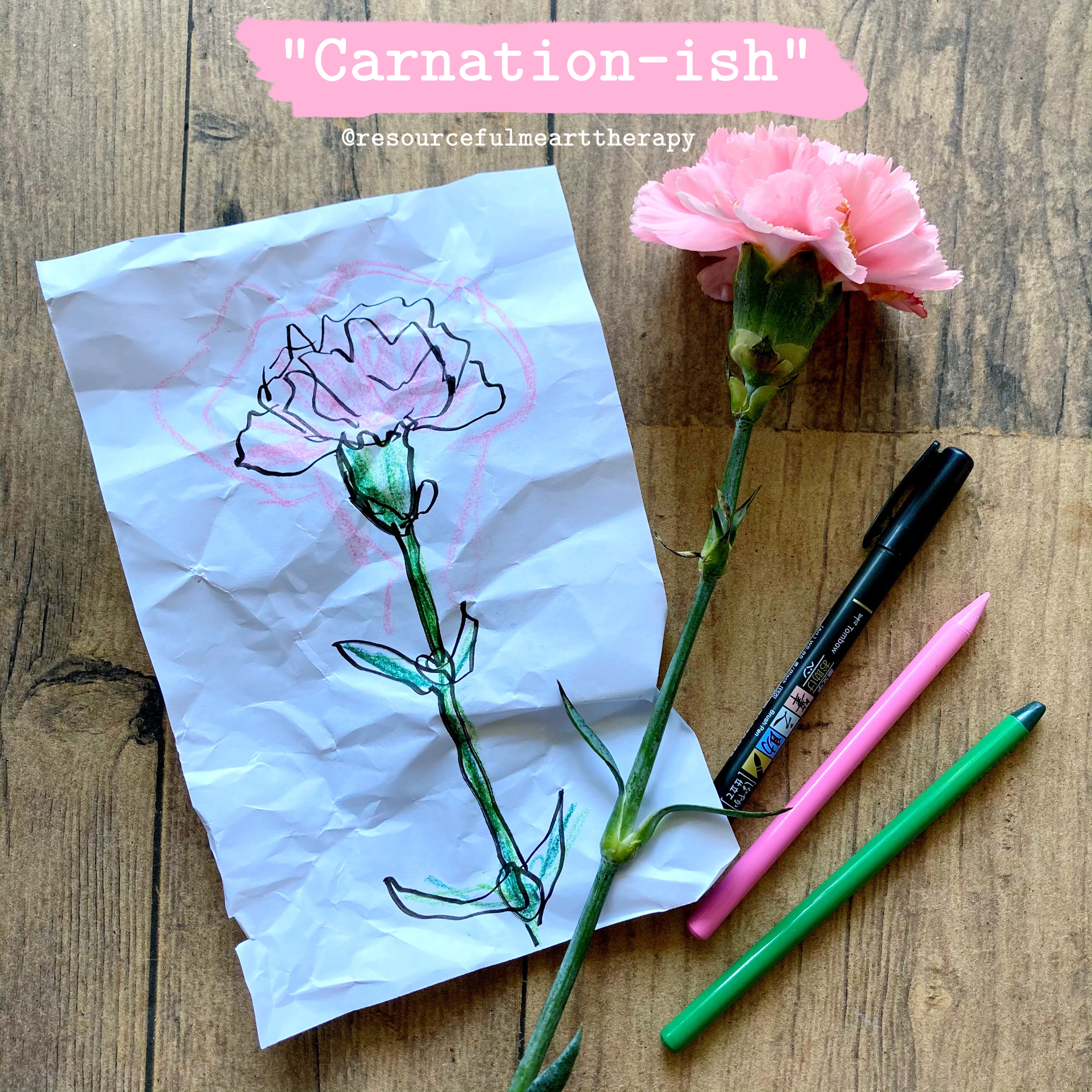 """Drawing of a carnation, beside a cut pink carnation, with the title """"Carnation-ish"""""""